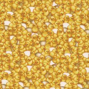 Massor av kycklingar