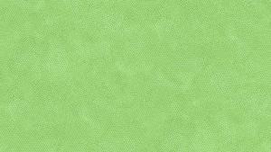 Dimples Grön Baby Lettuce