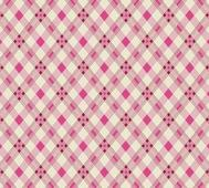 Denyse Schmidt Wild Rose Open Plaid